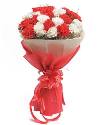 21 adet kırmızı beyaz karanfil buketi  Iğdır 7 kasım çiçekçiler