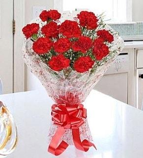 12 adet kırmızı karanfil buketi  Iğdır Bağlar ucuz çiçek gönder