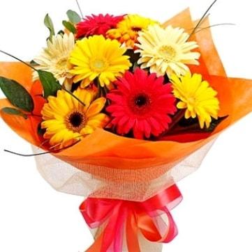 9 adet karışık gerbera buketi  Iğdır Konaklı internetten çiçek siparişi