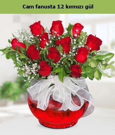 Cam içerisinde 12 adet kırmızı gül  Iğdır Enginalan uluslararası çiçek gönderme