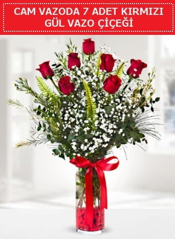 Cam vazoda 7 adet kırmızı gül çiçeği  Iğdır 14 kasım hediye çiçek yolla