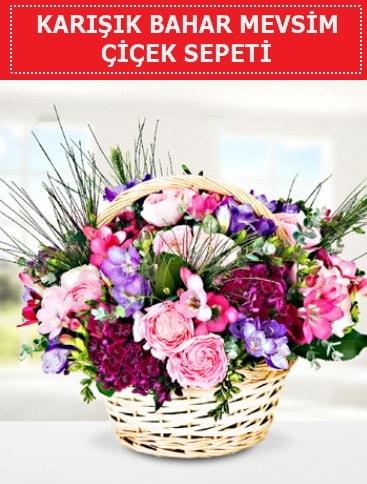 Karışık mevsim bahar çiçekleri  Iğdır Cumhuriyet çiçek siparişi vermek