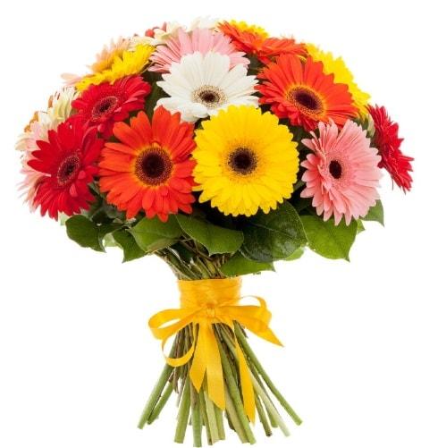 Gerbera demeti buketi  Iğdır 7 kasım çiçekçiler