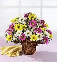 Iğdır Akyumak 14 şubat sevgililer günü çiçek  Mevsim çiçekleri sepeti